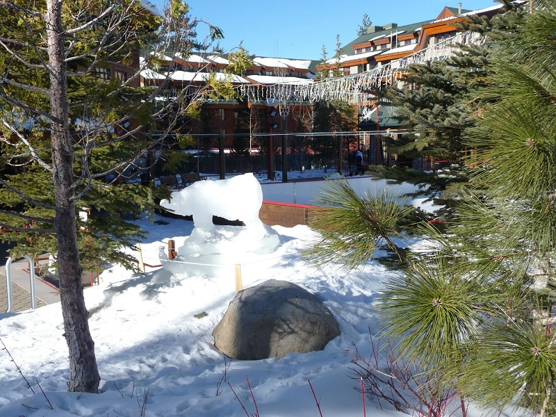 Marriott Vacation Club Timeshares for Sale