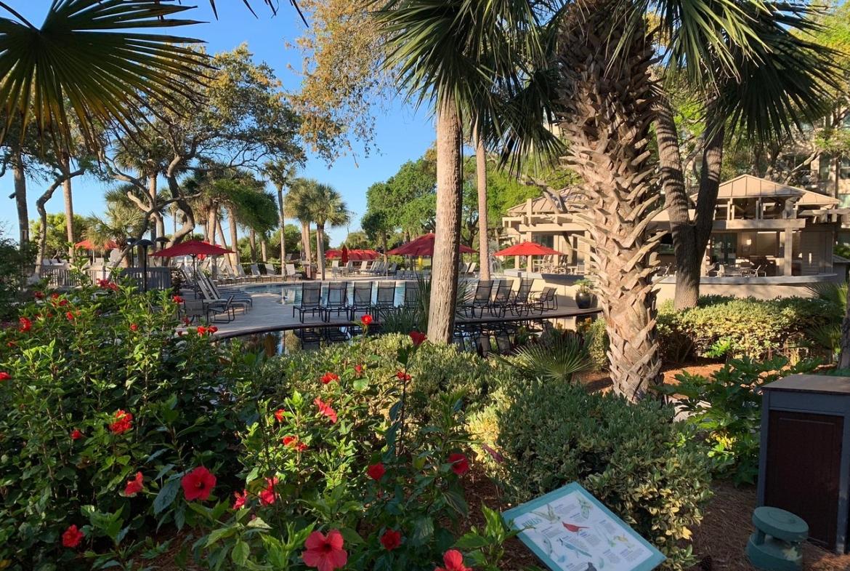 Marriott's Monarch at Sea Pines Pool Area